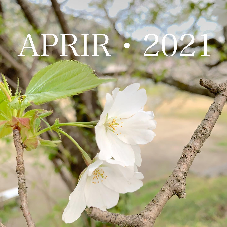 #APRIL#2021#令和3年#4月#祝御入園#祝ご入学#桜
